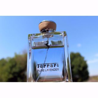 Ferrari Pure Lavender EDT 100ml